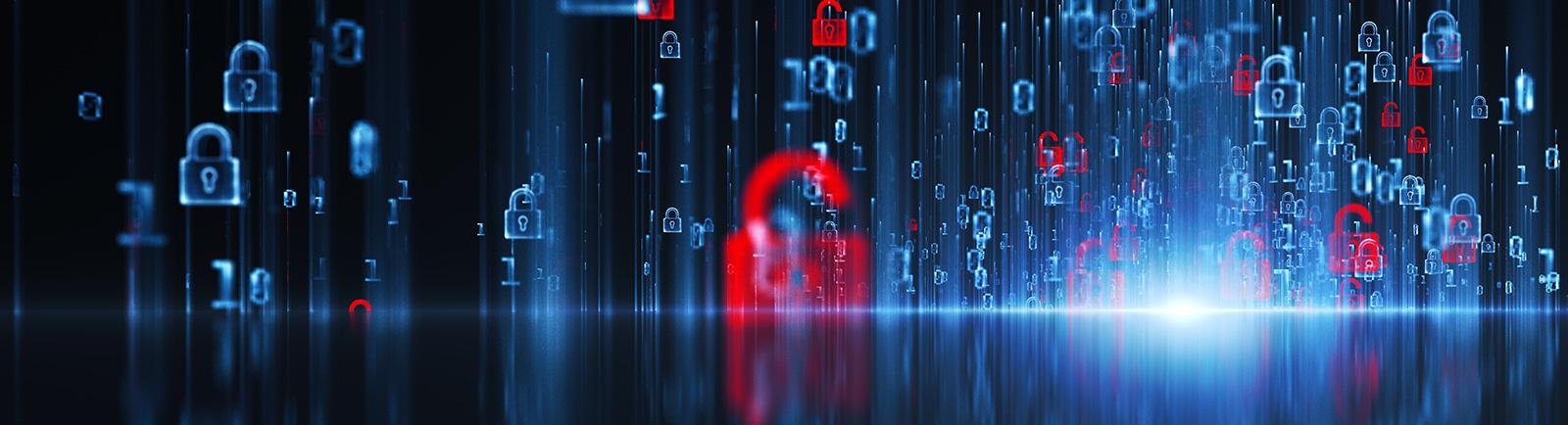 SSL security Hampshire